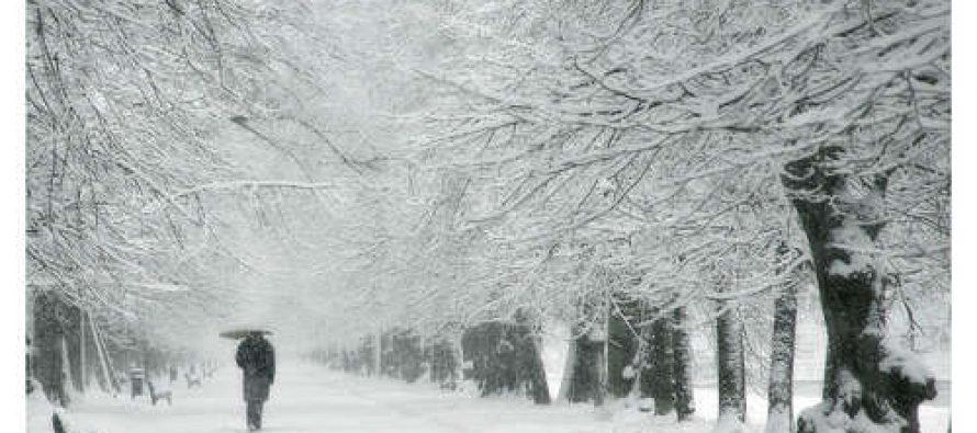 ისრაელში თოვლი მოვიდა