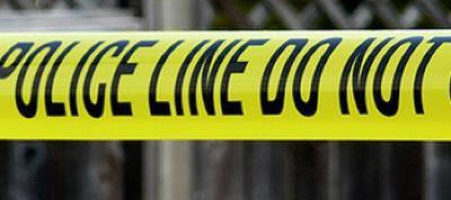 გურჯაანში საპატრულო პოლიციის მანქანას ესროლეს