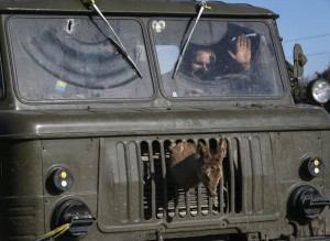 Ukrainian serviceman rides on a military vehicle as they leave area around Debaltseve