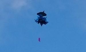 აქციის მონაწილეებმა კანცელარიასთან ცაში ზვიგენი გაუშვეს (ფოტო)
