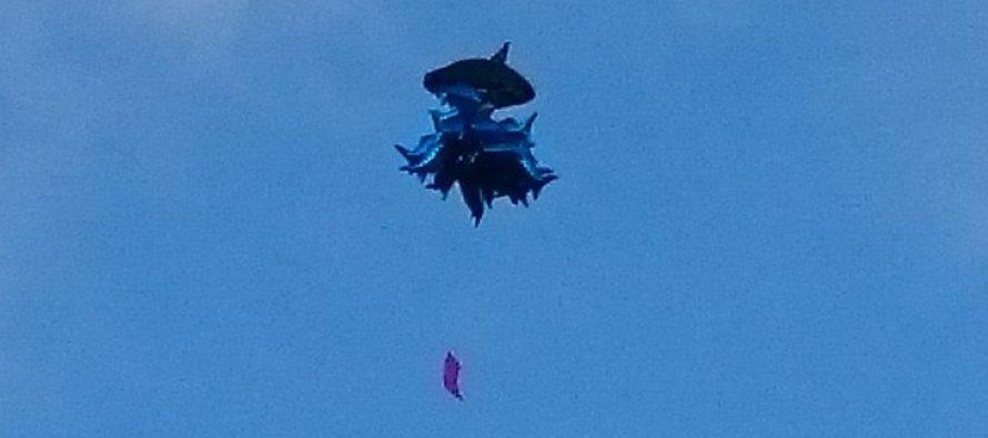 აქციის მონაწილეებმა კანცელარიასთან ცაში ზვიგენის ფორმის ბუშტები გაუშვეს (ფოტო)