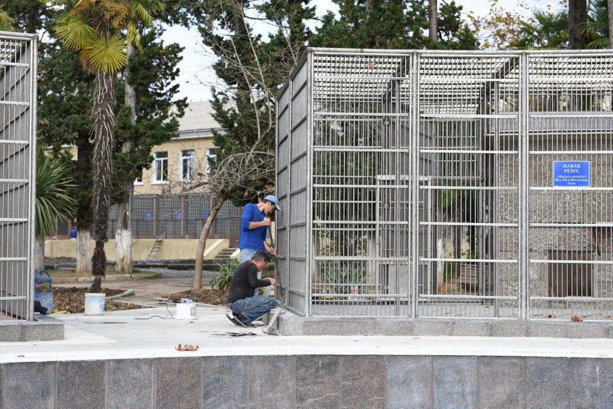 სოხუმის მაიმუნების საშენ სახლს რეაბილიტაცია ჩაურატდა