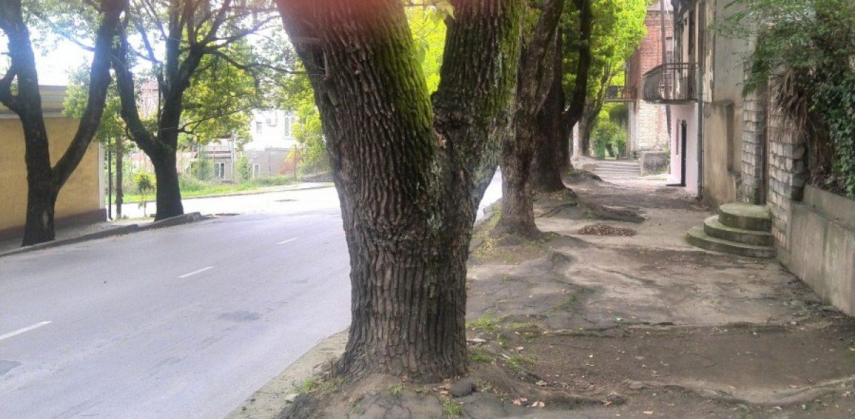 სოხუმი, კიროვის ქუჩა