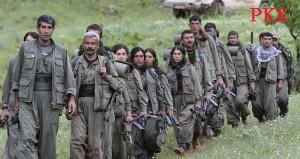 PKK-3