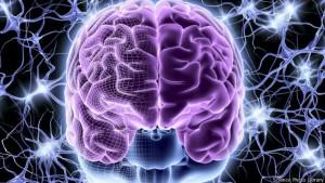ახალგაზრდა სისხლს შეუძლია მოხუცის ტვინი გააახალგაზრდავოს