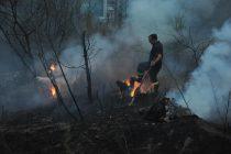 სოფელ დაბას მიმდებარე ფერდობებზე ნახანძრალი ტერიტორიის გარკვეულ მონაკვეთზე კვლავ ცეცხლი გაჩნდა