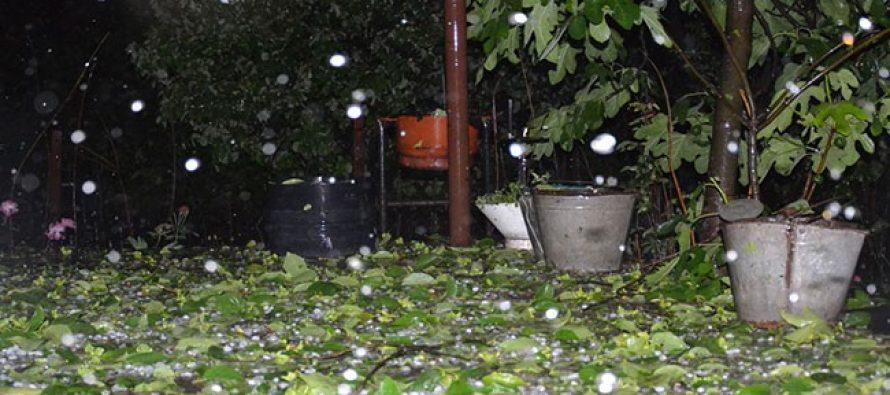 ქალაქ რუსთავში 20 წუთის განმავლობაში გადაუღებლად წვიმდა