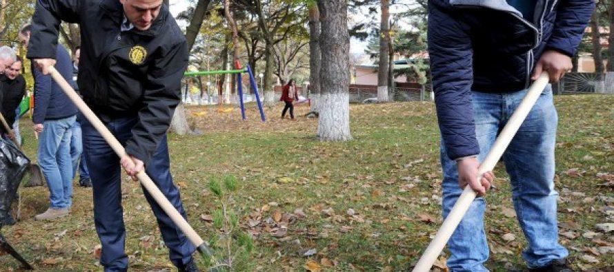 დავით ნარმანია: არითმეტიკას ჯობია, გავიდნენ ადგილზე და სათითაოდ დაითვალონ დარგული ხეები