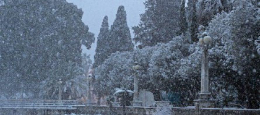 თოვლი სოხუმში-ასე შორს და ასე ახლოს
