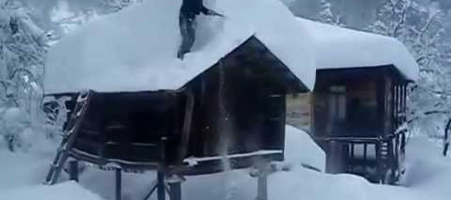 გურიაში მაღალმთიან სოფლებში თოვლის საფარმა 50 სმ მიაღწია