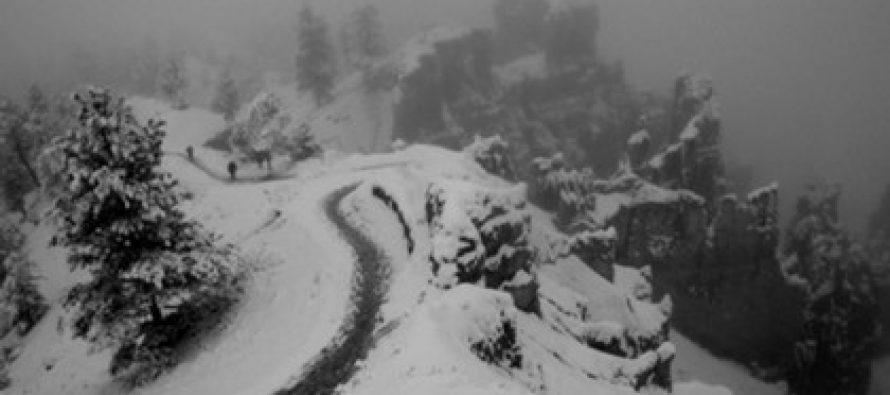 აჭარის მთებში თოვს, უხვი ნალექია ბეშუმსა და გოდერძის უღელტეხილზე