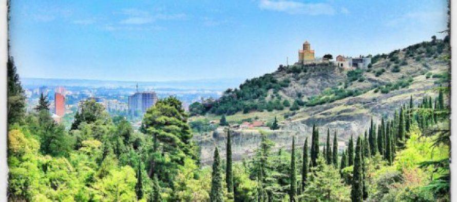 ბოტანიკური ბაღის მიმდებარე 29 ჰექტარი მიწის ტერიტორია მინიმალურ ფასად, 6 326 495 ლარად გაიყიდა