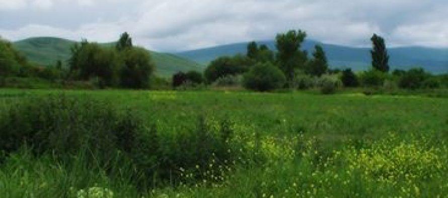 მედიატური საოკუპაციო ხაზთან მდებარე სოფლებში
