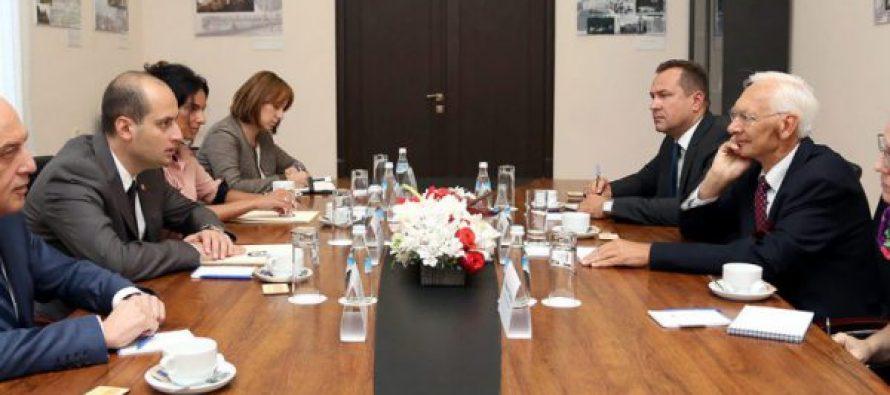 მიხეილ ჯანელიძე OSCE/ODIHR საპარლამენტო არჩევნებზე დაკვირვების მისიას შეხვდა