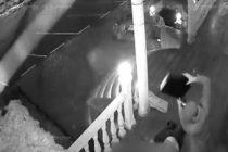 (VIDEO) აზერბაიჯანელის სასტიკი მკვლელობა ვიდეომ დააფიქსირა