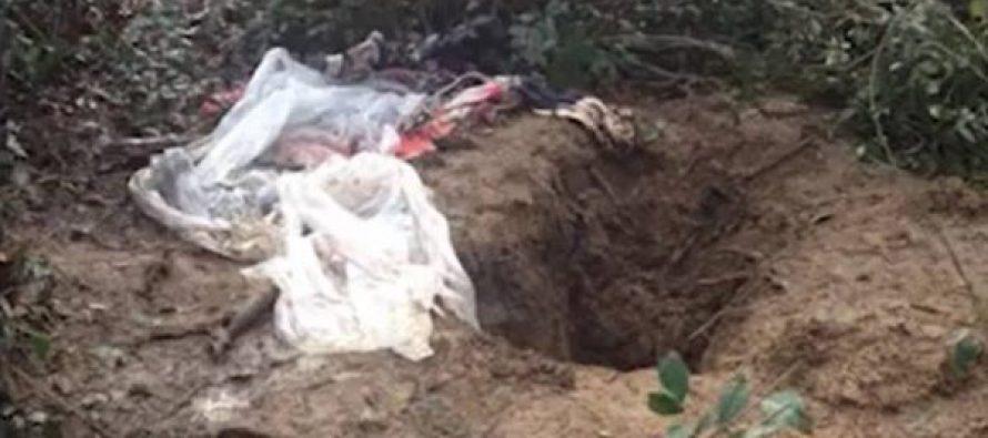 (Video) სასტიკი მკვლელობები აფხაზეთში