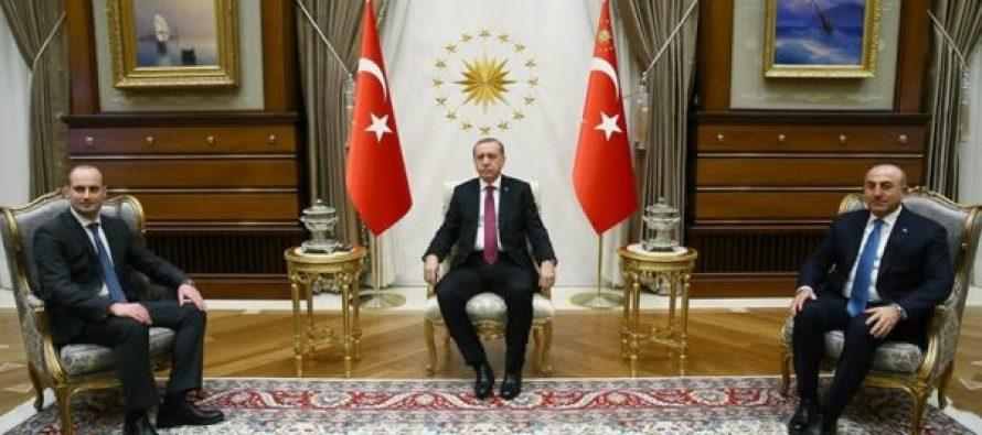 მიხეილ ჯანელიძე თურქეთის პრეზიდენტს შეხვდა