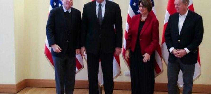 მარგველაშვილი: საქართველო აშშ-სგან მეტ მხარდაჭერასა და თანამშრომლობას ელოდება