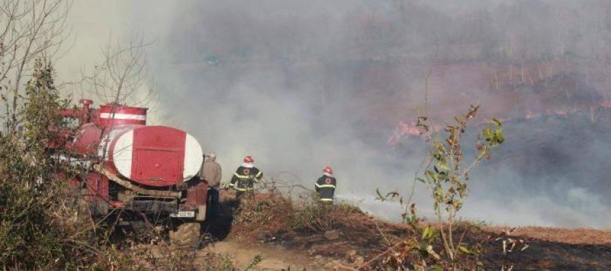 (ფოტო) წალენჯიხის მუნიციპალიტეტის სოფელ ნაკიფუში ტყის მასივი იწვის