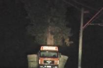 ნატანებში  საპატრულო პოლიციამ ჟურნალისტებს ხის გადატანის პროცესის გადაღება აუკრძალა