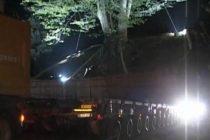ამ წუთებში ნატანებიდან ივანიშვილის წაბლის ხე გადააქვთ-სოფელს შუქის მიწოდება უკვე შეუწყდა