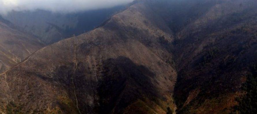 აზერბაიჯანელმა და სომეხმა მეხანძრე-მაშველებმა ბორჯომის ხეობა დატოვეს