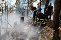 ტყის მასივში გაჩენილი ხანძრის სალიკვიდაციო სამუშაოები უწყვეტ რეჟიმში გრძელდება