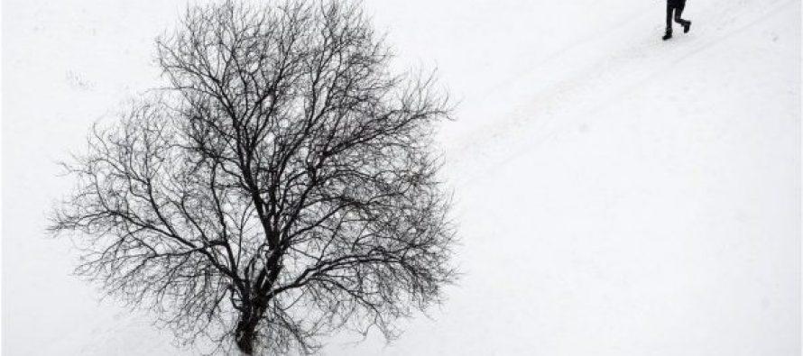 გუდაური-კობის საგზაო მონაკვეთზე თოვლში ჩარჩენილი მგზავრები უკვე გამოიყვანეს