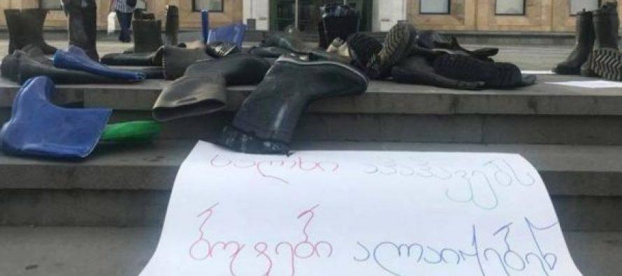 """მთავრობის ადმინისტრაციის შენობასთან """"ბოტების"""" აქცია გაიმართა"""