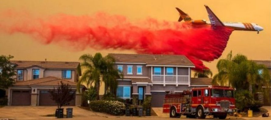 სამხრეთ კალოფორნიაში დააკავეს მამაკაცი, რომელმაც ტყეებს ცეცხლი წაუკიდა