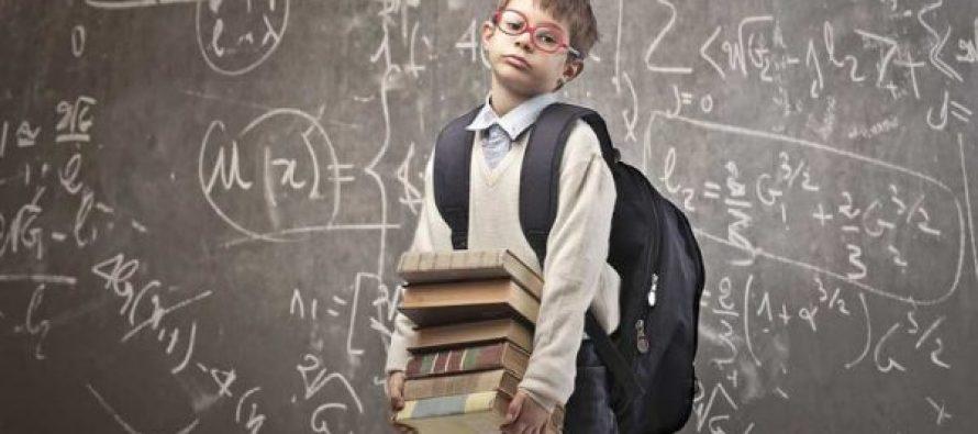 მოსწავლეების წიგნების წონა განახევრდა-რომელ კლასებს შეეხო ცვლილება?!