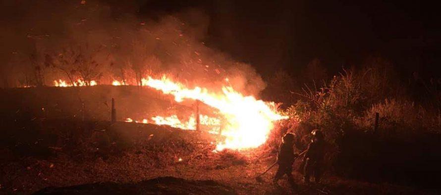 ხანძარი ჩაქვში – ცეცხლი სამ ჰექტარზეა გავრცელებული (+ვიდეო)