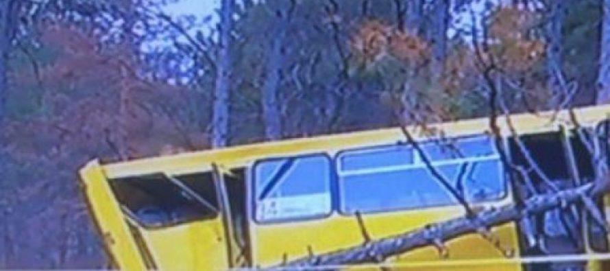 ავტოსაგზაო შემთხვევა წყნეთში – მუნიციპალური ავტობუსი დაგორდა და ხეებს შეეჯახა, დაშავებულია 7 ადამიანი