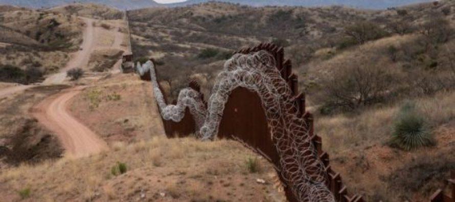 პენტაგონმა აშშ-მექსიკის საზღვარზე კედლის ასაშენებლად მილიარდი ევრო გამოყო