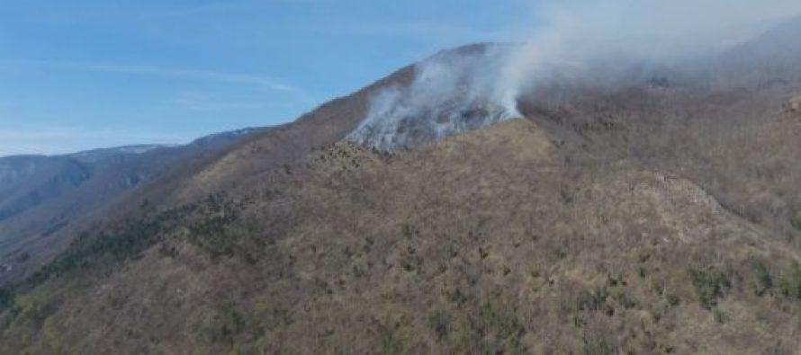 მამზიშხას მთაზე გაჩენილი ცეცხლი დაახლოებით 25 ჰექტარზეა გავრცელებული