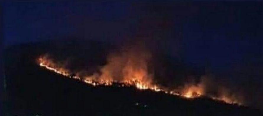 ცეცხლის გავრცელებას ქარიანი და მშრალი ამინდი უწყობს ხელს -რა ხდება გაგრაში