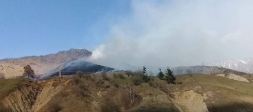 გუდამაყრის ხეობაში ხანძარია – ცეცხლი ტყის მასივს გაუჩნდა