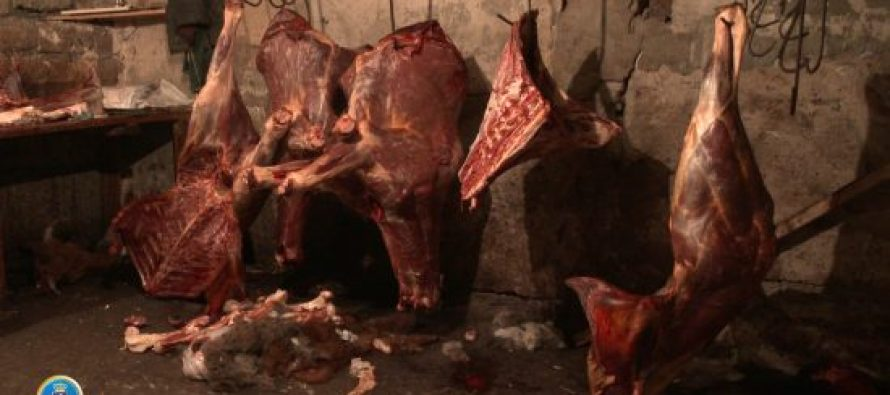 ცხენისა და ვირის ხორცის საქონლის ხორცის სახით რეალიზაციის ფაქტზე ორი პირი ამხილეს