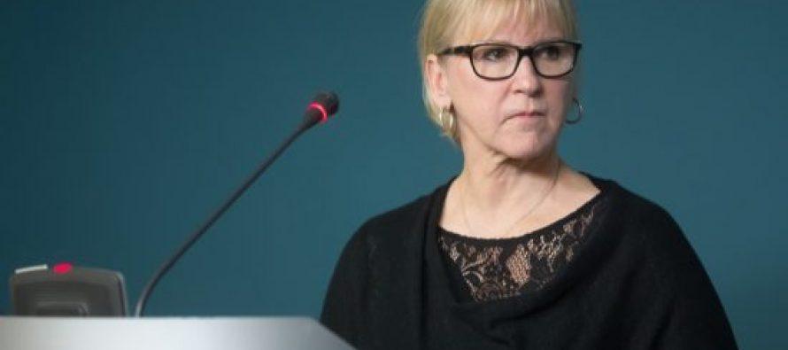 თუ ევროკავშირში გაწევრიანება არის კიბე, წარმოიდგინეთ, რომ თქვენ უკვე ახვედით რამდენიმე საფეხურზე – შვედეთის საგარეო საქმეთა მინისტრი