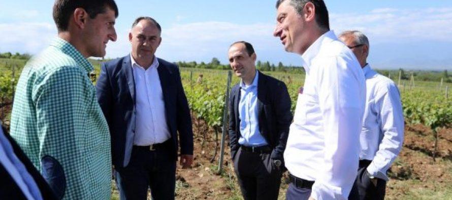 გიორგი გახარია: ფერმერებს სრულად ჩამოეწერებათ 8 მლნ ლარის ოდენობის დავალიანება 2012-2019 წელს, ასევე 2020 წლის სამელიორაციო მომსახურების საფასურს მთლიანად სახელმწიფო გადაიხდის