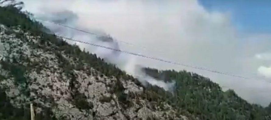 მესტიაში, ტყის მასივში ხანძრის ჩაქრობა ამ დრომდე ვერ ხერხდება