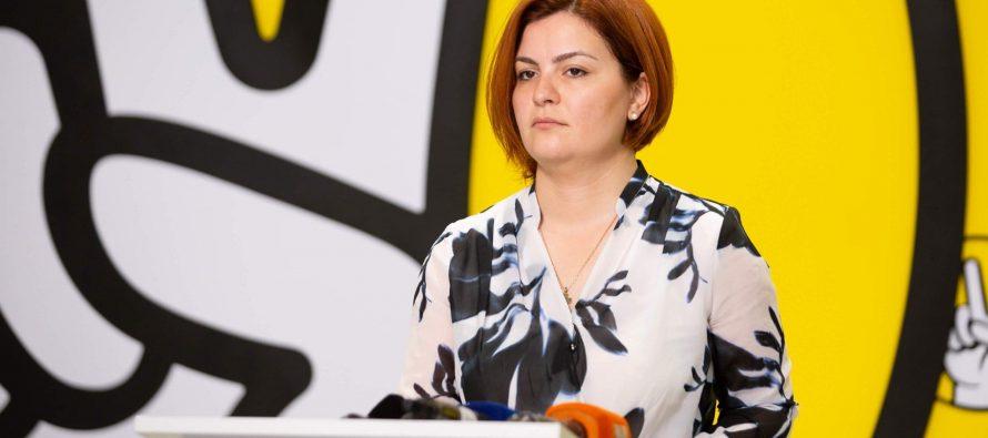 """ანა ნაცვლიშვილი : """"ოცნება"""" გარეჯის თემით საარჩევნოდ მანიპულირებს და რუსეთის წისქვილზე ასხამს წყალს"""
