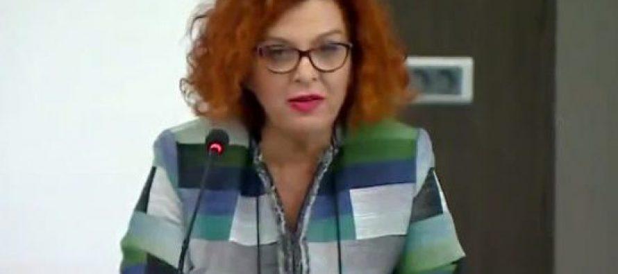 არ იყო ნათლად გამიჯნული ხაზი მმართველ პარტიასა და სახელმწიფოს შორის – OSCE